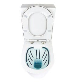 Advantages of Rimless Toilets